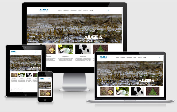 new website for Algea